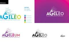 AGILEO_IDV-Recherches_2